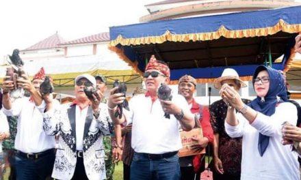 Bupati Tasikmalaya Buka O2SN, FLS2N dan Pekan Kebudayaan Nasional